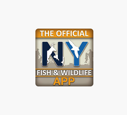 New york fishing hunting and wildlife the state of new york for New york out of state fishing license